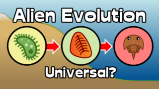 Are Cambrian Explosions Universal?
